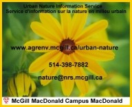 Business Card created by Tuxxedo Studios for the McGill University's Nature Information Center.